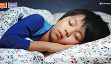 大腦與睡眠:怎麼睡,學習效率才會高?