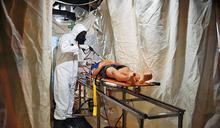 【炭疽病威脅】台灣只剩過期疫苗 專家:不見棺材不掉淚