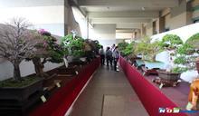 雲林樹石藝術展覽會 斗六棒球場展出