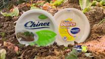 Consumer Reports: Eco-friendly paper plates