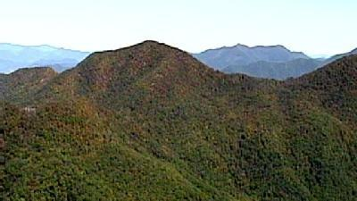 Western North Carolina's Fall Foliage Gains National Attention