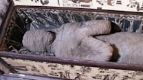 Kid Finds Egyptian Mummy in Attic?