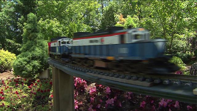 Meet the train lady and her mini-garden railroad