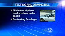 Lawmakers mull several texting and driving bills