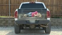 Truck Decal of 'Bound Woman' Stirs Up Controversy