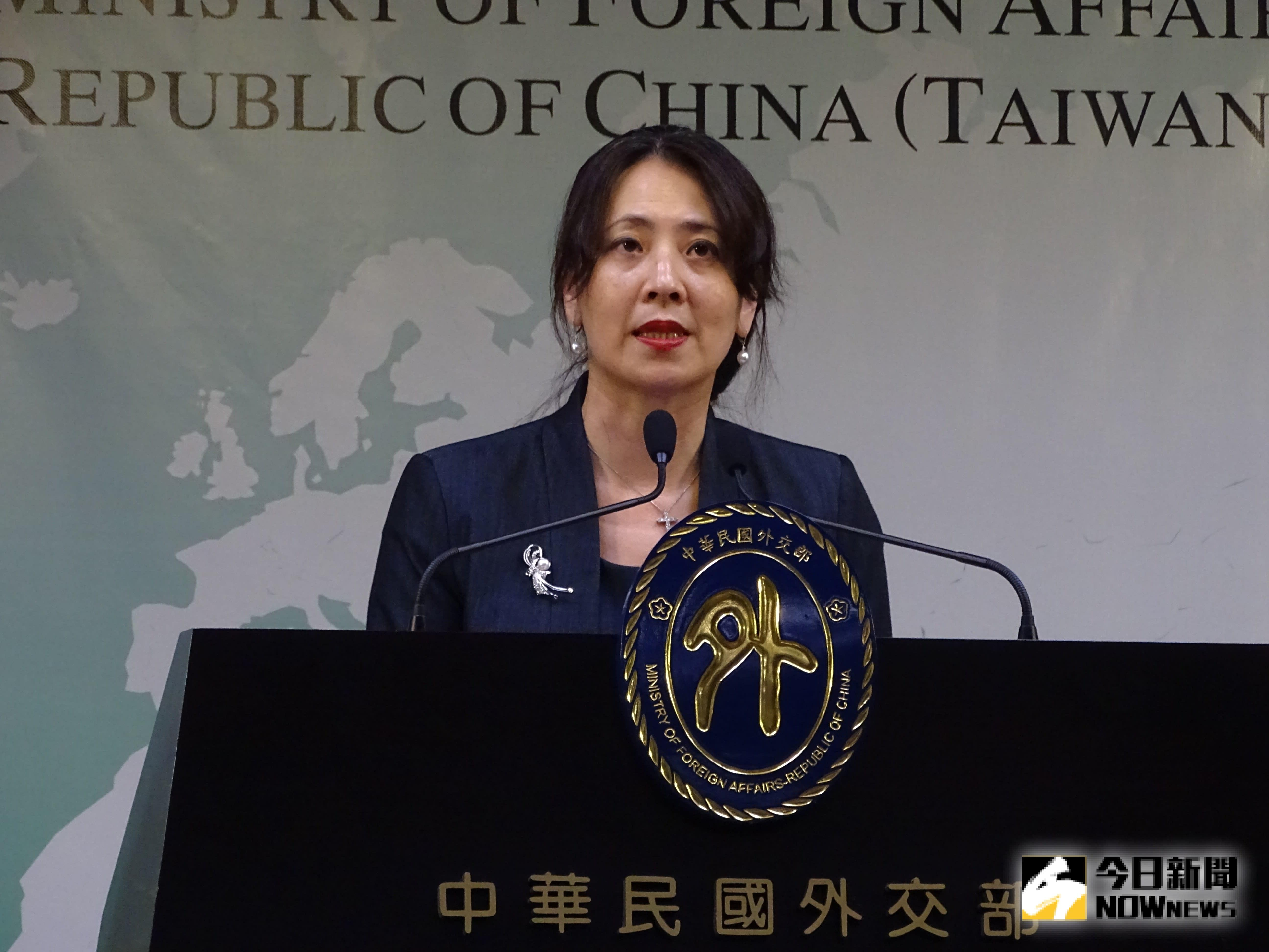 陸自居中央政府 外交部怒批政治操作