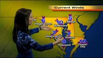 Chelsea Ingram Has Your Sunday Afternoon Forecast