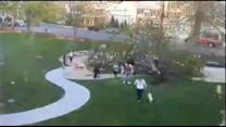 Tree Falls on Top of Children Playing in Massachusetts Park