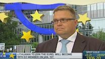 Euro zone is not sick: Bank of Lithuania head