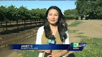Farm worker shortage leads to increase in pay, other issues