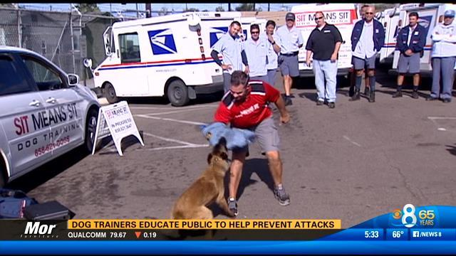 Dog trainers educate public to help prevent attacks
