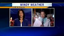 Windy weather causes problems in Kalihi