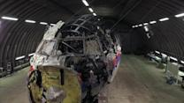 Details of Flight MH17 Crash Released