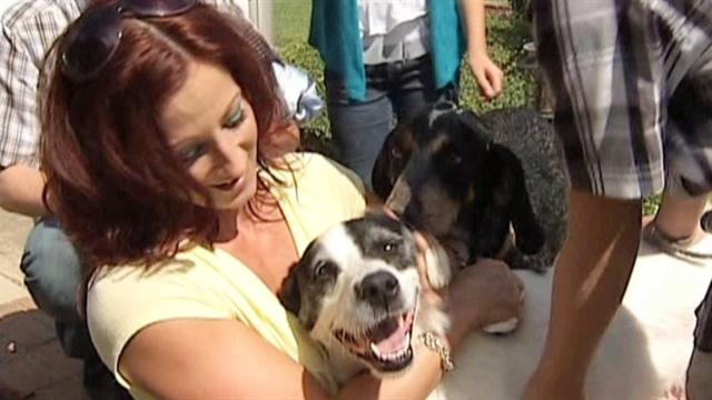 Lost dog reunited with owners after 3 years