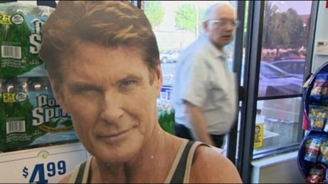 Hasselhoff Sign Theft Leads To Serious Accident