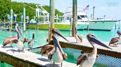 10 Best Little Beach Towns In Florida