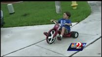 6-year-old Fla. boy saved from gator's grip