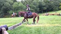 Hesitant Horse Overcomes Fear in Spectacular Leap
