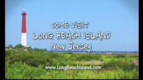 """Business owners: Forget Sandy, """"LBI is Alive!"""""""