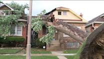 Fast storm causes damage, outages throughout Chicagoland