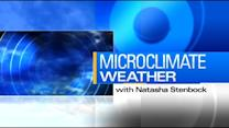 MicroClimate Forecast: Thursday, November 14, 2013 (Morning)