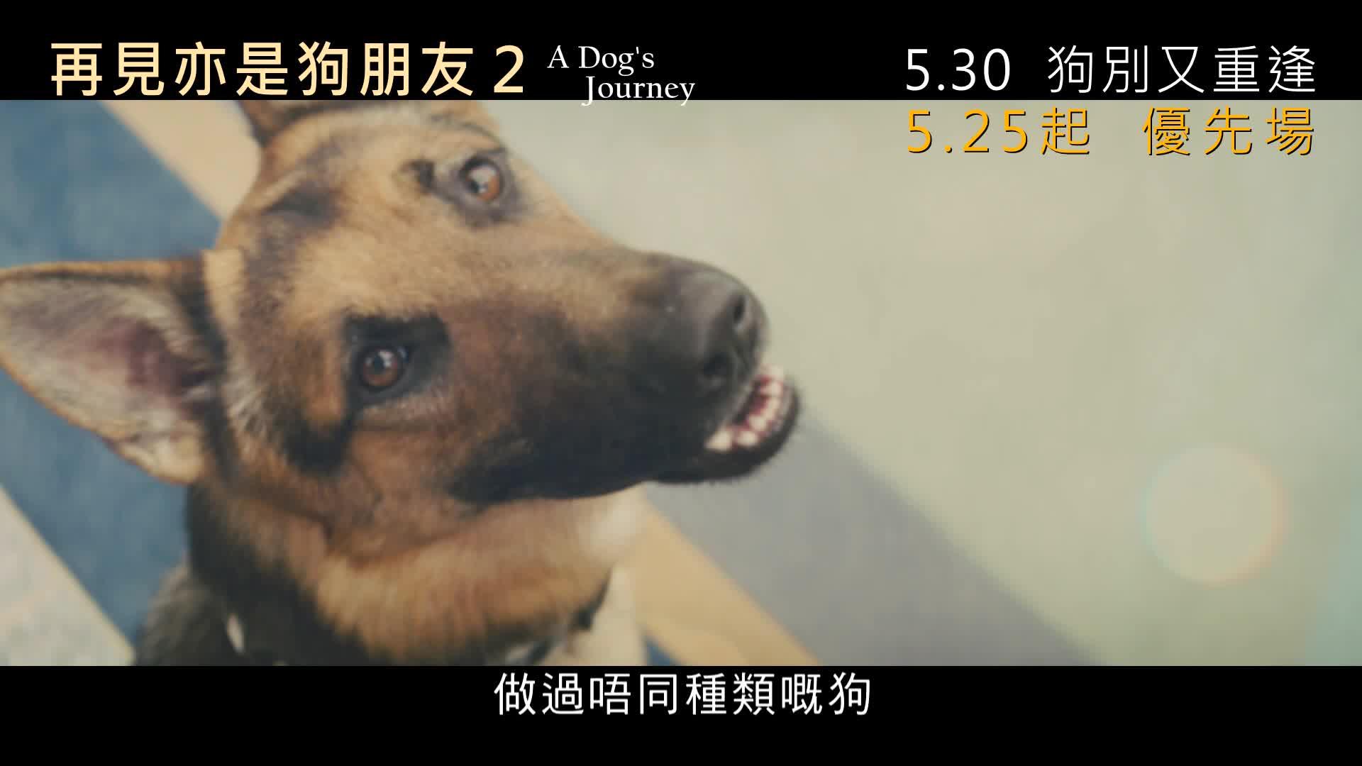 《再見亦是狗朋友2》電影預告