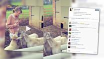 Taylor Swift Records a 'Baaaad' Confrontation With Sheep