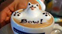 3-D coffee artist portrays dogs in froth