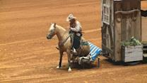 Wild Mustang Trainers Go Head-to-Head at Texas Event