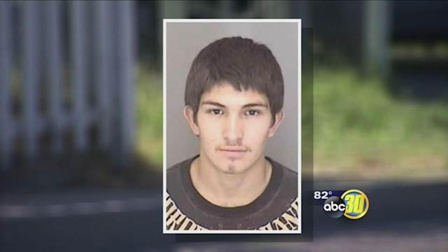 Atwater teen allegedly kills dog with a wooden board