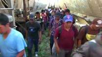 Human smuggling bust leads to 36 arrests