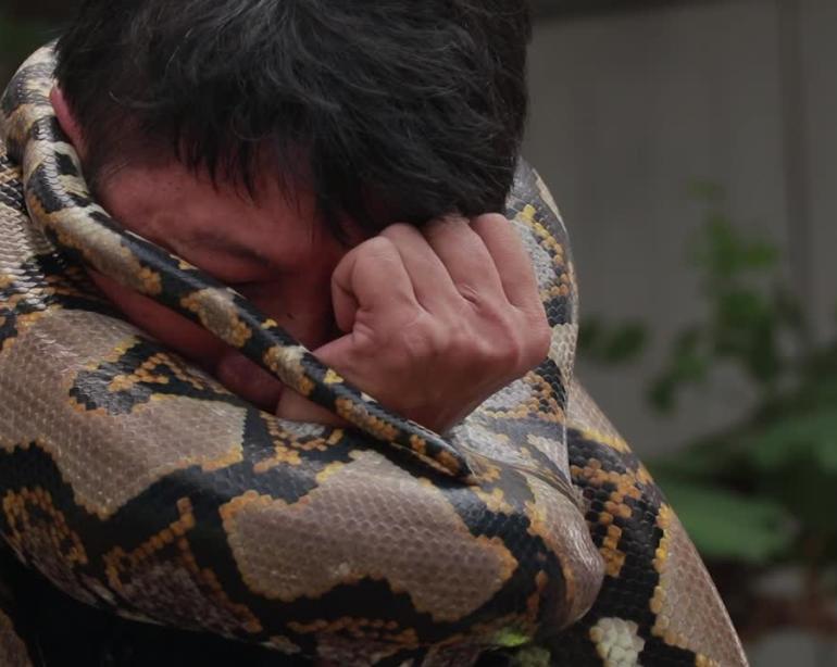 Brave Thai fireman shows how to escape a deadly python attack