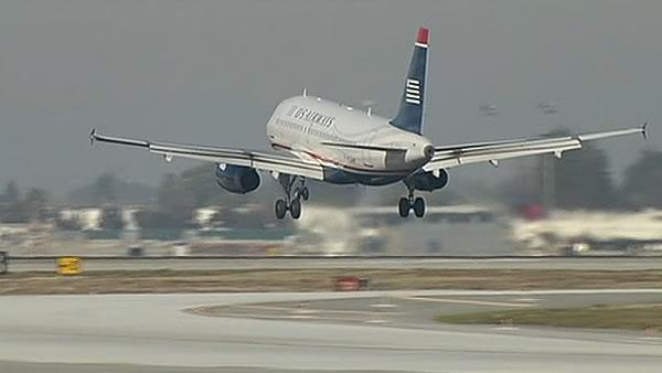 San Jose airport wants tougher bird strike measures