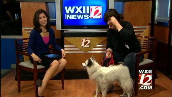 Saturday Pet Of The Week: Ty