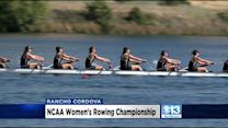 NCAA Rowing Championships Draw Athletes From Across Country To Lake Natoma