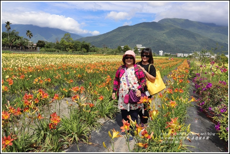 嘉德萱草園-2018-05-29.jpg