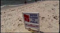 Report card on the health of America's beaches