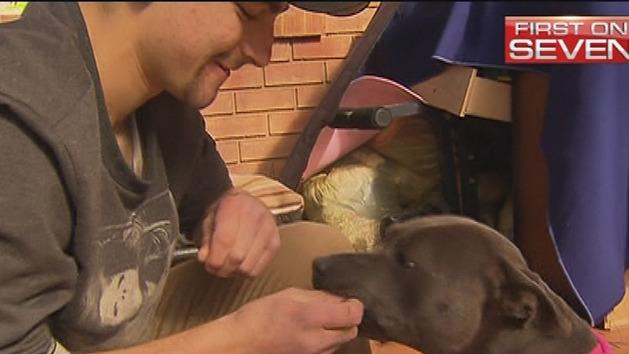 Dog reunited with owners