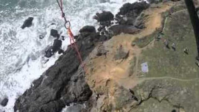 Helicopter Rescues Dog From 90-Foot California Cliff