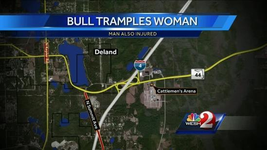 2 People injured by bull