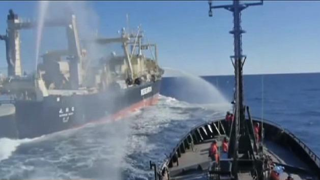 Final attempt to stop whaling