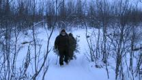 'The Last Alaskans': Christmas Tree Hunting Is a Favorite Winter Pasttime, Even in the Arctic