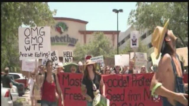 ABC Action News at 6 PM: March Against Monsanto