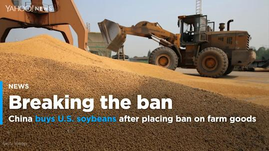 U S  official says China far short of soybean purchase