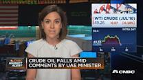 Crude falls amid UAE oil minister comments