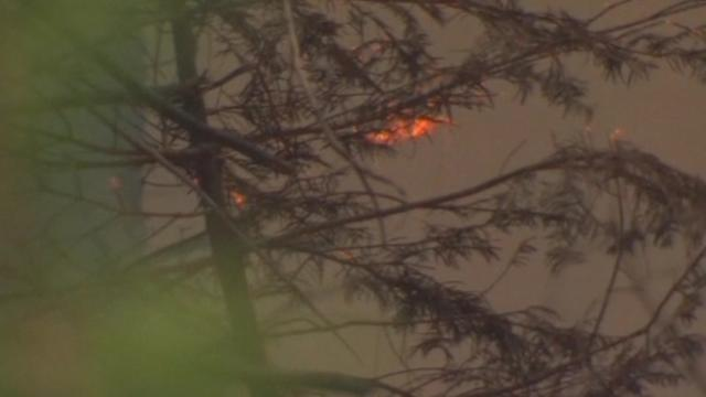 Parts of Yosemite National Park charred by wildfires