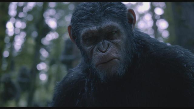 How 'Dawn of the Planet of the Apes' Made the Ape Come To Life