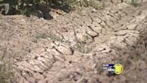 Valley farmers face zero water allocation next year