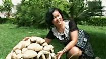 Raw: Mega Mushroom Causes Stir in China Village