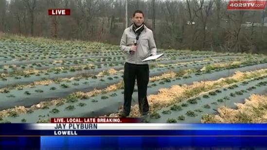 Cold weather impact on Arkansas' first crop of the season